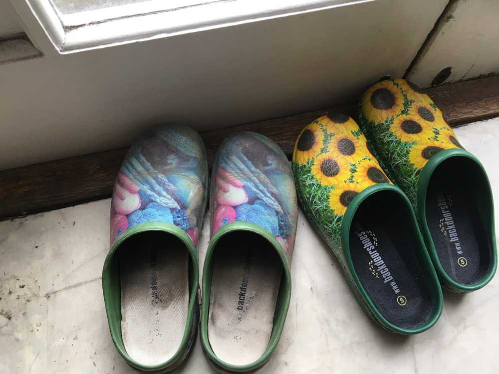 two pairs of backdoor shoes